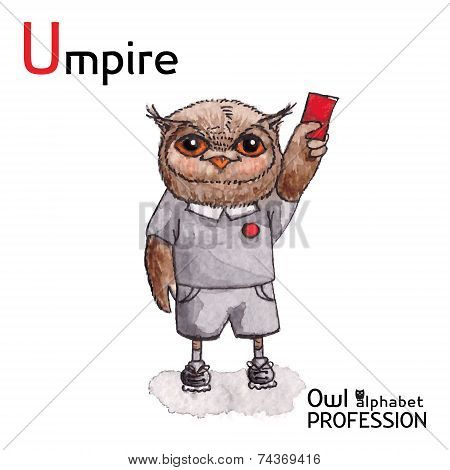 Alphabet professions Owl Letter U - Umpire Vector Watercolor.