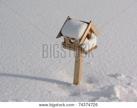 Bird Box With Snow