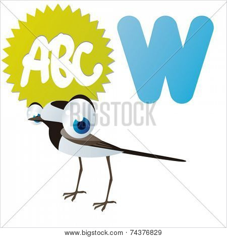 W is for Wagtail