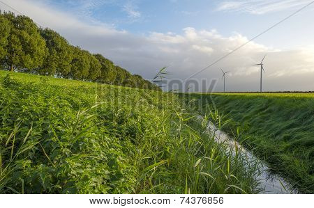 Ditch along a road through the countryside