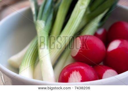 Fresh Radish And Onion