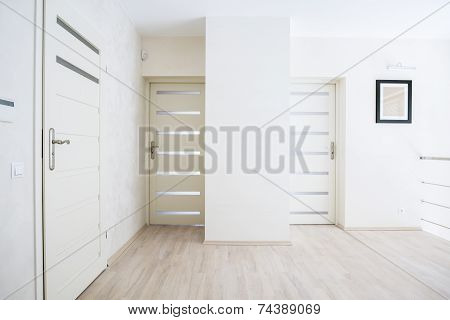 Hall With White Doors