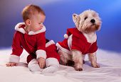 stock photo of santa baby  - Funny small baby in Santa Claus and dog in Santa Claus costume - JPG