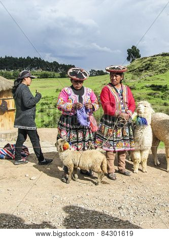 Indian Woman Pose With A Lama For Tourists In Cuzco