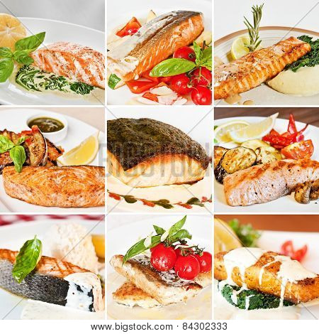 Fish Dishes Collage