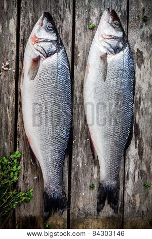 Two Raw Seabass With Fresh Thyme On Wooden Table
