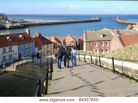Whitby Visitors