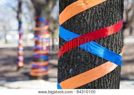 Tree decorated with colored ribbons