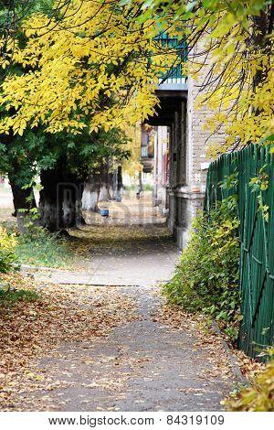 sidewalk in a city in autumn