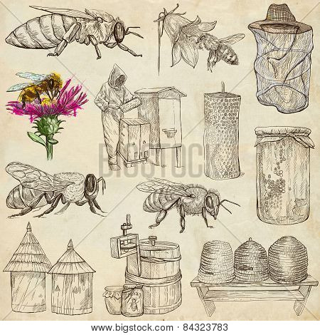 Bees, Beekeeping And Honey - Hand Drawn Illustrations