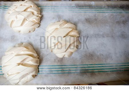 Bread Rolls After Being Shaped