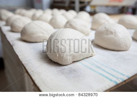 Bread Before Fermentation