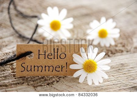 Natural Looking Label with Text Hello Summer