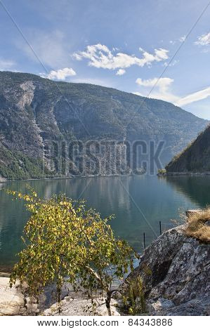 Summer In The Fiord