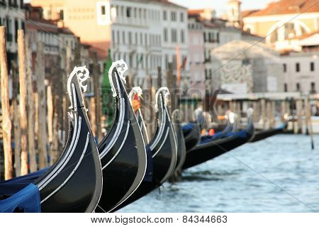 Rows of Gondolas in Venice
