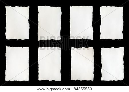 Torn Piece Of White Paper