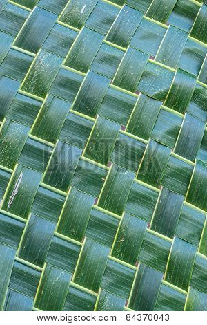 Coconut Leaf Weave Pattern.