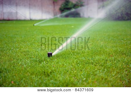 Grass Sprinkler closeup photo