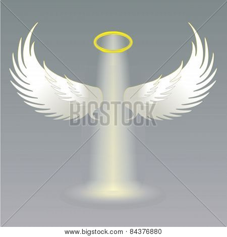 Angel wings and golden halo