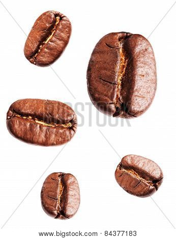 Collection Of Roasted Coffee Beans Isolated On White Background. Closeup, Macro.