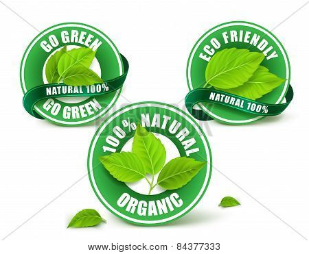 Green Organic Labels, Badge or Seal Set Isolated