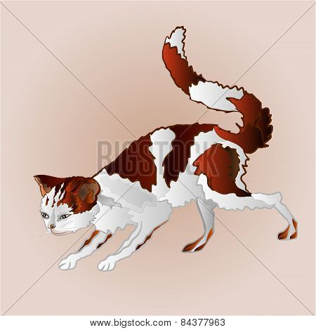Kitty On The Hunt Vector