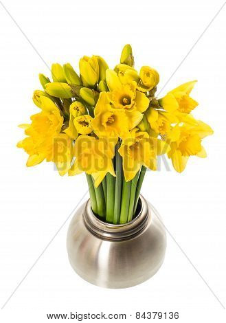 Fresh Spring Narcissus Flowers In A Vase