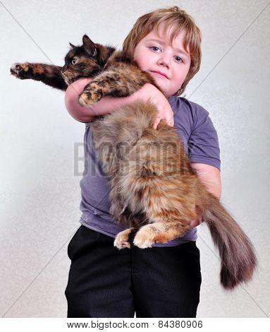Cute Blond Boy With A Cat