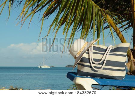 Striped Bag And Hat Under Palm Frond