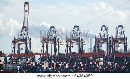 Container Cranes And Containers At A Dock