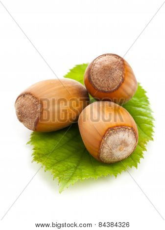 Hazelnuts With Hazelnut Leaf On White Background