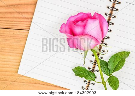 Pink Rose On Diary Isolated On Wood Background