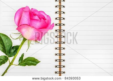 Pink Rose And Diary, Valentines Day