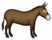 pic of donkey  - Digital illustration of a donkey  - JPG