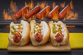 stock photo of grilled sausage  - Three Hot Dogs with Mustard - JPG