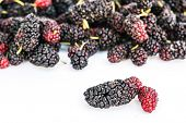 picture of mulberry  - Close up of Mulberry isolated on white background - JPG