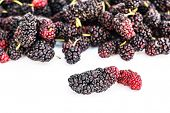 image of mulberry  - Close up Fresh Mulberry isolated on white background - JPG