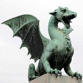 picture of dragon  - Famous Dragon statue on Dragon bridge  - JPG