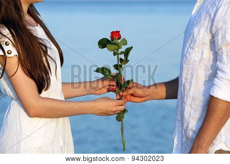 Young man giving flower for his girlfriend on beach