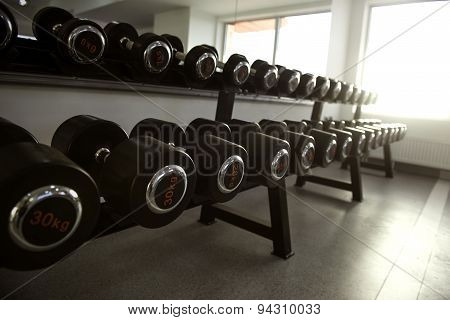 Neatly Stacked Dumbbells