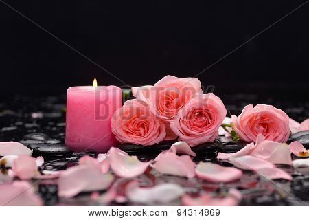 Lying down rose ,petals,candle and wet stones
