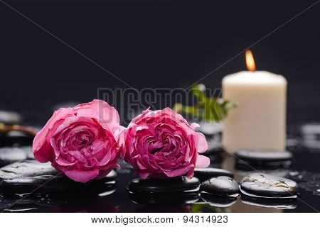 Two pink rose ,candle and wet stones