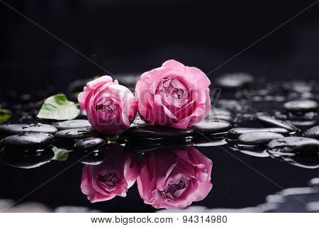 Still life with pink rose and wet stones