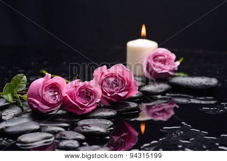 Lying down pink rose ,candle and wet stones