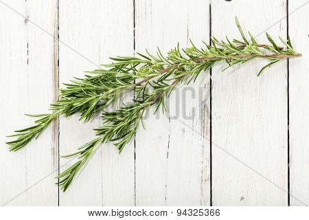 Rosemary twig on rustic wooden background