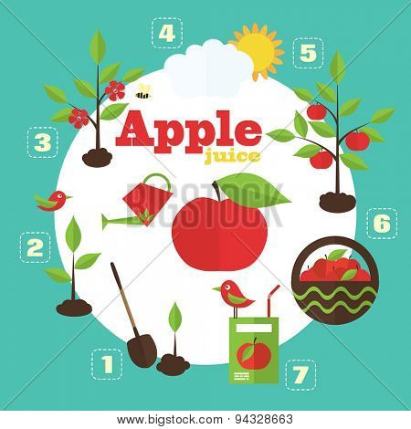 Vector garden illustration in flat style. Planting apple trees, harvesting, processing apples into juice.