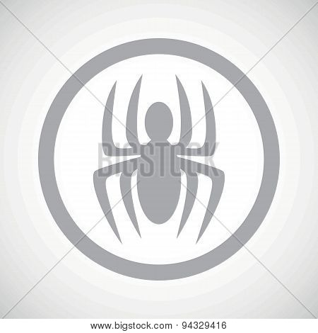 Grey spider sign icon