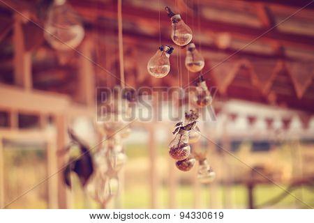 Light Bulbs Decor