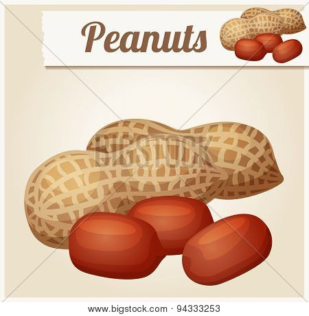 Peanuts. Detailed Vector Icon