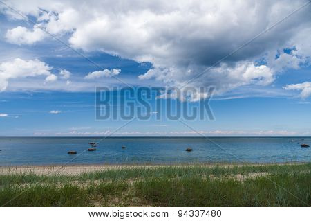 Calm Baltic Sea Shore With Sedge Grass